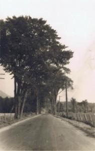 La Montée des trente vers 1920 ...